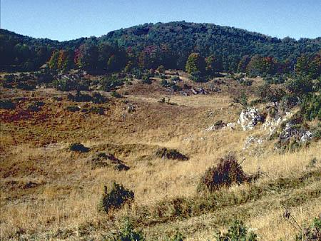 Forrás: nemzetipark.gov.hu